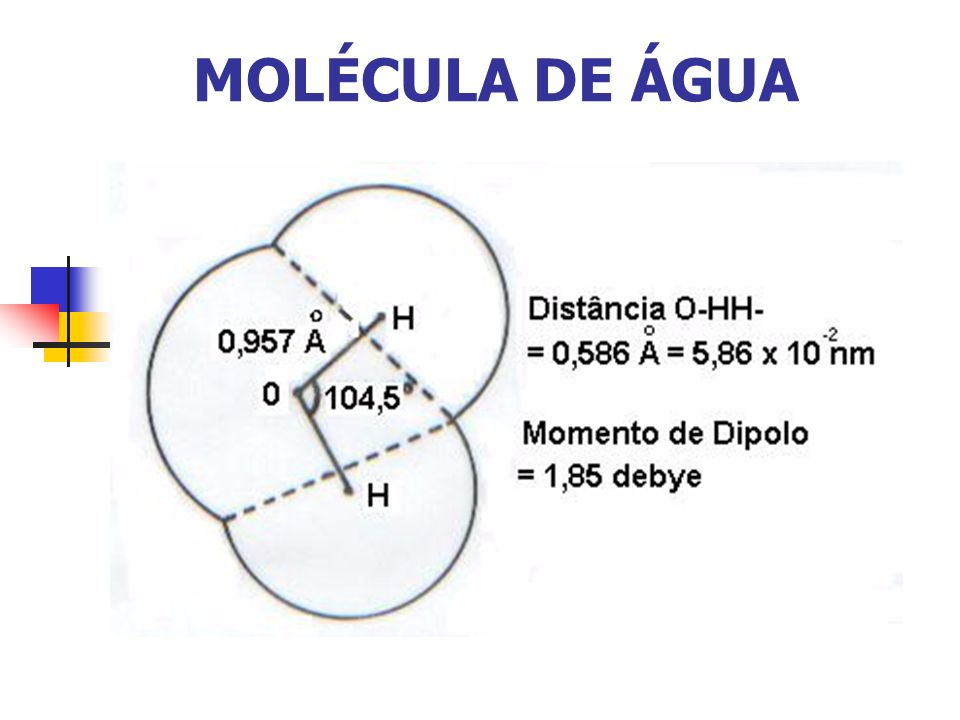 MOLÉCULA DE ÁGUA