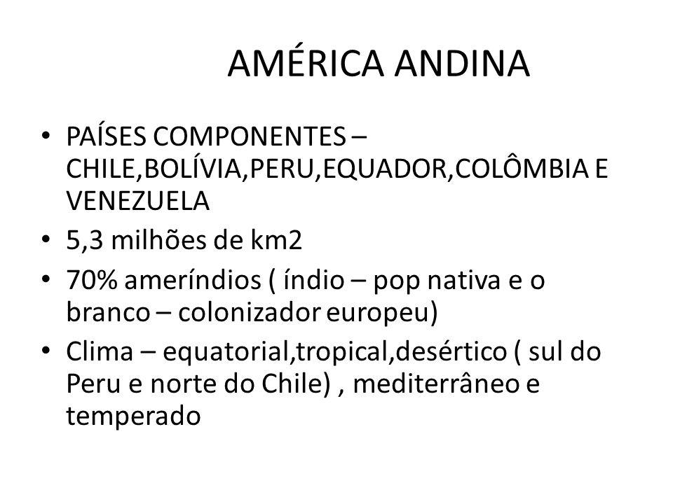 AMÉRICA ANDINA PAÍSES COMPONENTES – CHILE,BOLÍVIA,PERU,EQUADOR,COLÔMBIA E VENEZUELA. 5,3 milhões de km2.