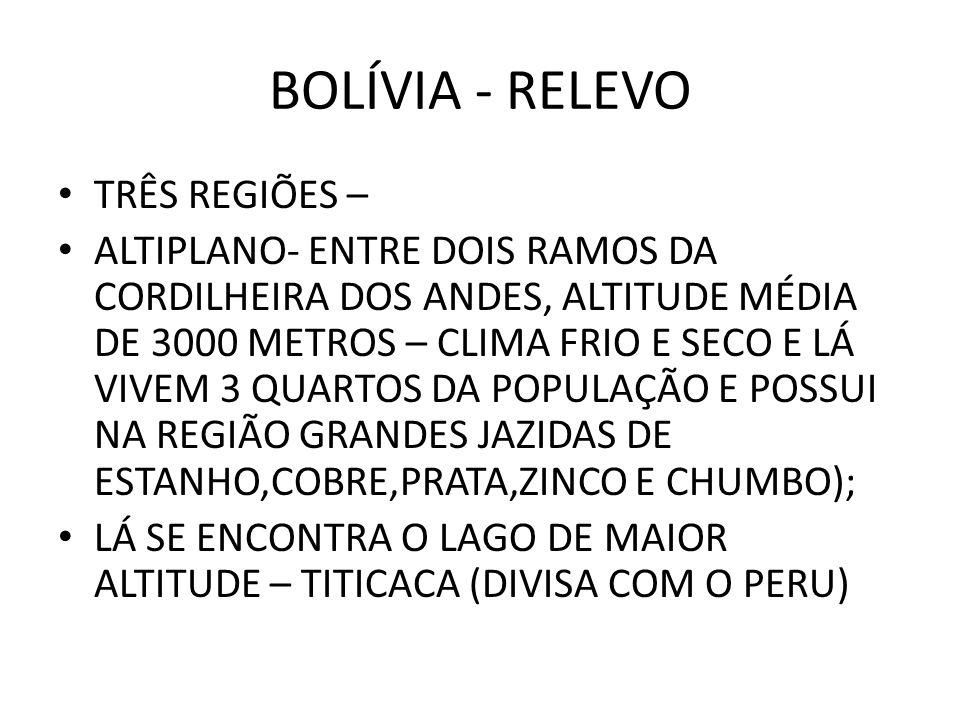BOLÍVIA - RELEVO TRÊS REGIÕES –