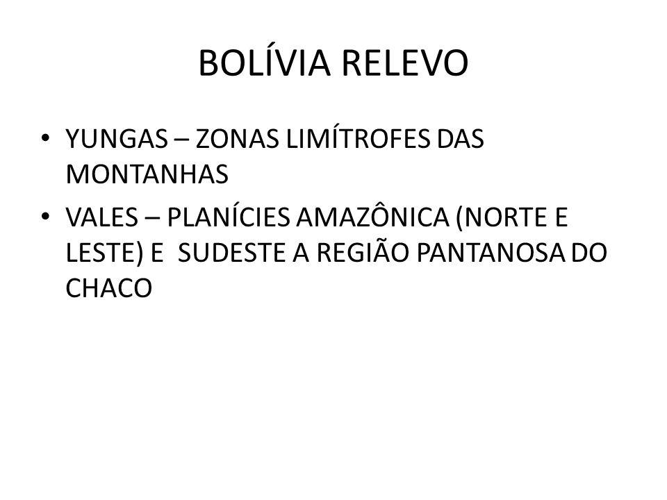 BOLÍVIA RELEVO YUNGAS – ZONAS LIMÍTROFES DAS MONTANHAS