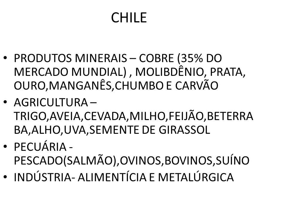 CHILE PRODUTOS MINERAIS – COBRE (35% DO MERCADO MUNDIAL) , MOLIBDÊNIO, PRATA, OURO,MANGANÊS,CHUMBO E CARVÃO.