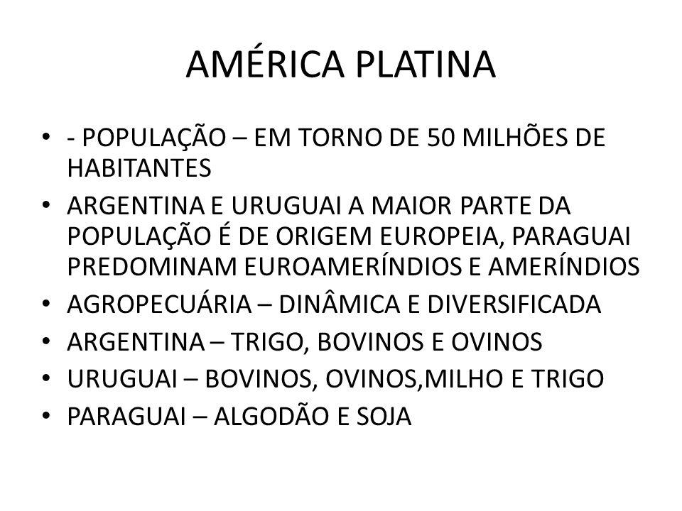 AMÉRICA PLATINA - POPULAÇÃO – EM TORNO DE 50 MILHÕES DE HABITANTES