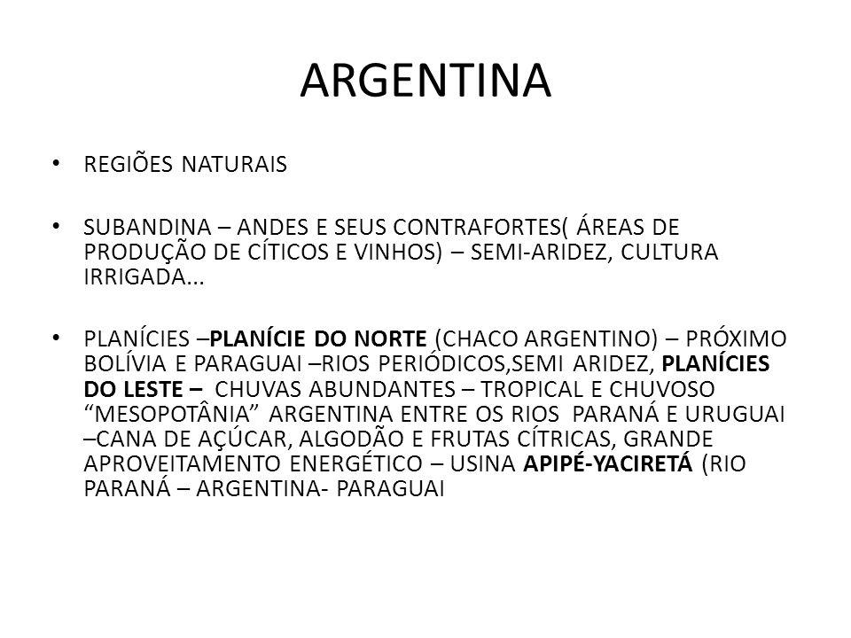 ARGENTINA REGIÕES NATURAIS