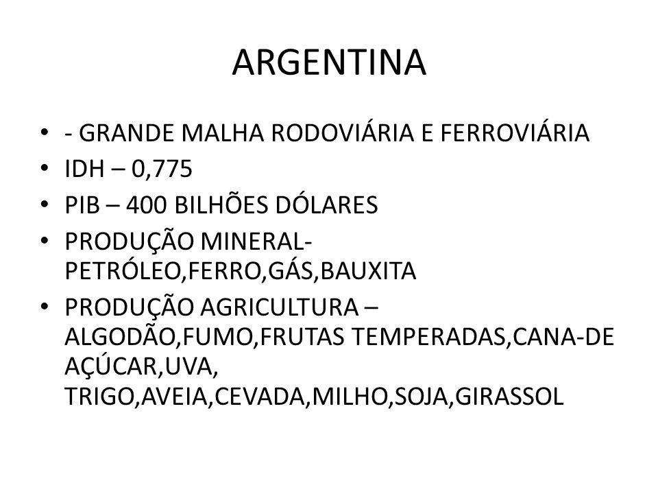 ARGENTINA - GRANDE MALHA RODOVIÁRIA E FERROVIÁRIA IDH – 0,775