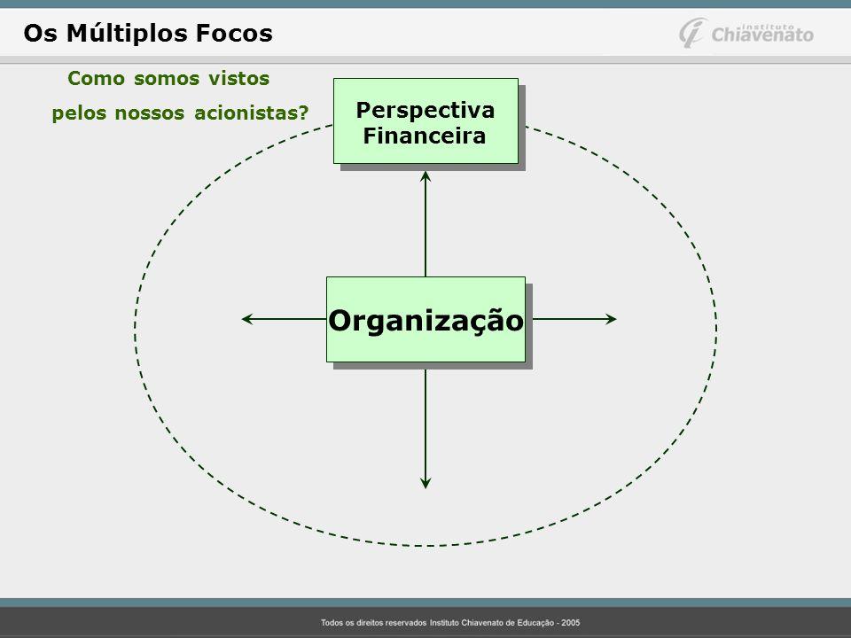 Organização Os Múltiplos Focos Perspectiva Financeira