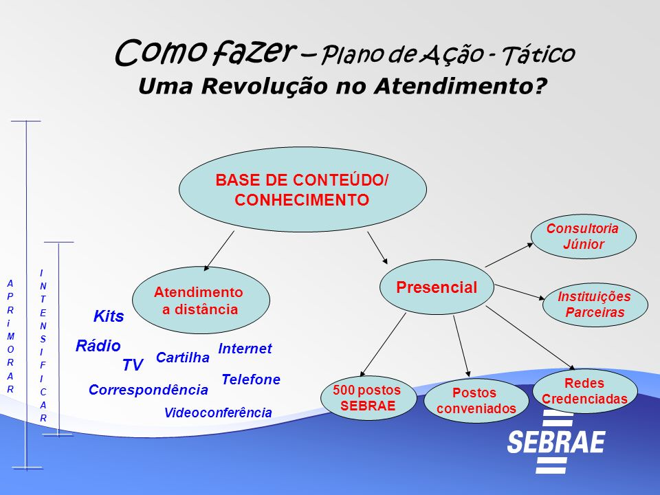 Como fazer – Plano de Ação - Tático Uma Revolução no Atendimento