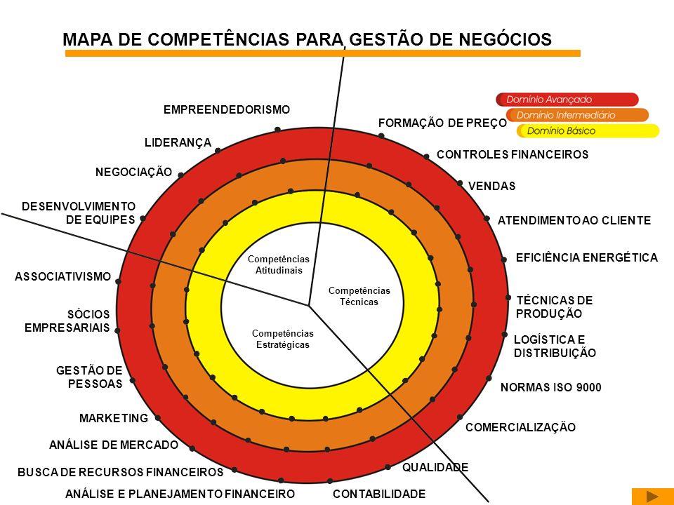 Competências Atitudinais Competências Estratégicas