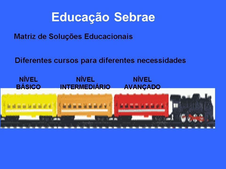 Educação Sebrae