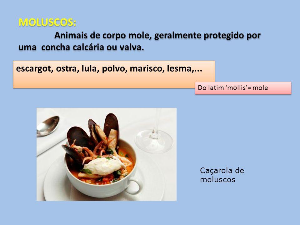 MOLUSCOS: Animais de corpo mole, geralmente protegido por uma concha calcária ou valva. escargot, ostra, lula, polvo, marisco, lesma,...