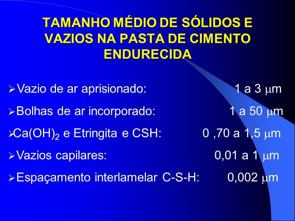 TAMANHO MÉDIO DE SÓLIDOS E VAZIOS NA PASTA DE CIMENTO ENDURECIDA