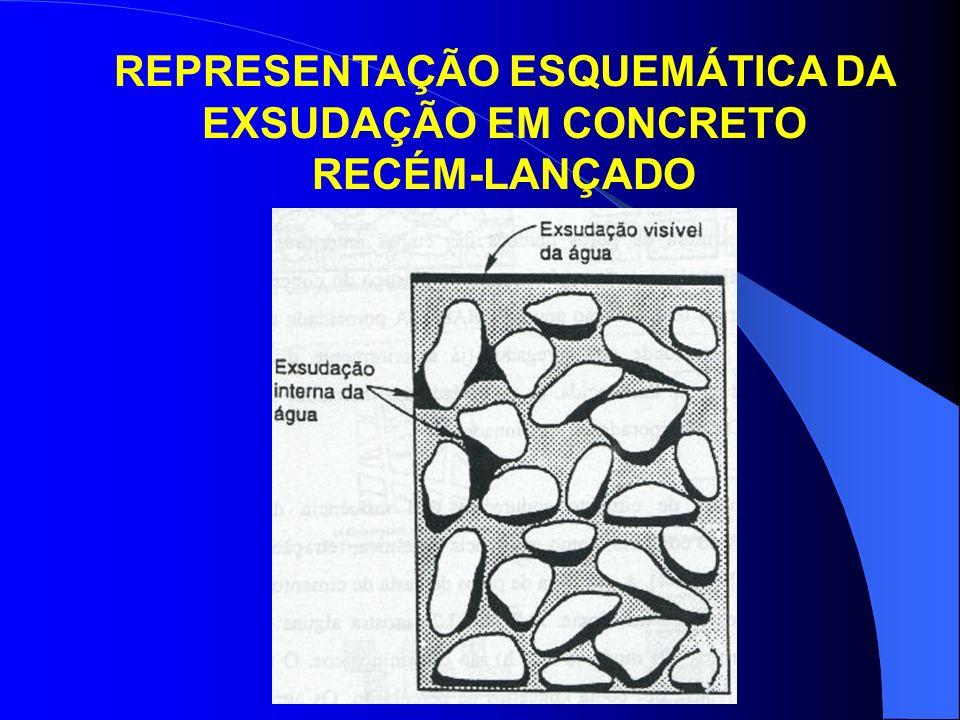 REPRESENTAÇÃO ESQUEMÁTICA DA EXSUDAÇÃO EM CONCRETO RECÉM-LANÇADO