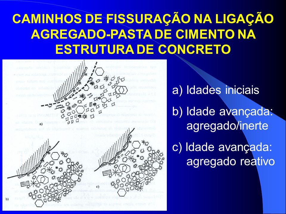 CAMINHOS DE FISSURAÇÃO NA LIGAÇÃO AGREGADO-PASTA DE CIMENTO NA ESTRUTURA DE CONCRETO