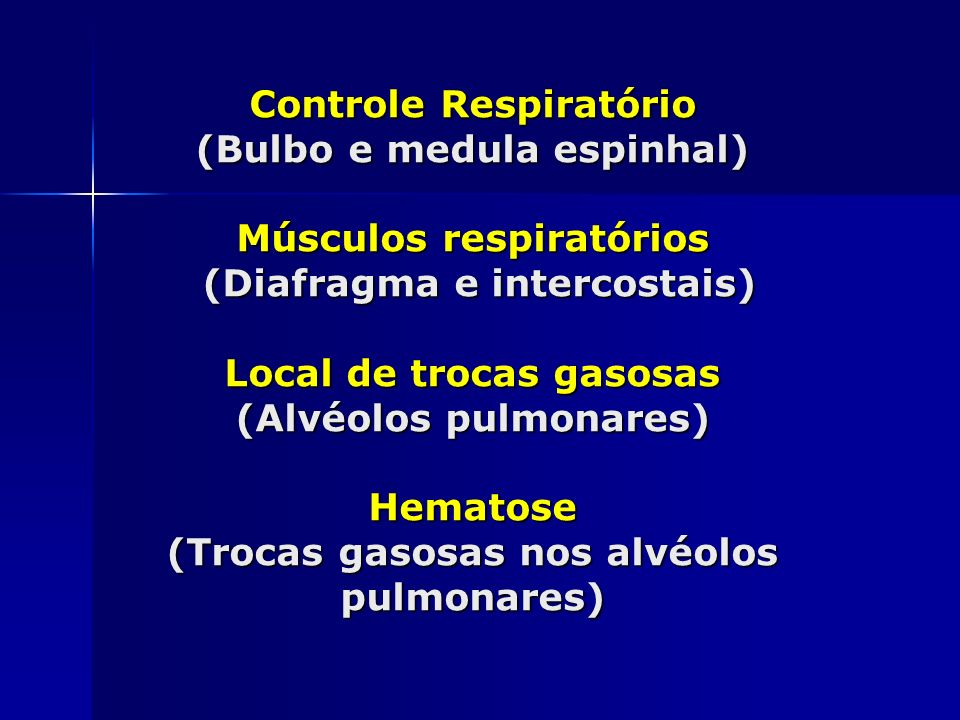 Controle Respiratório (Bulbo e medula espinhal) Músculos respiratórios (Diafragma e intercostais) Local de trocas gasosas (Alvéolos pulmonares) Hematose (Trocas gasosas nos alvéolos pulmonares)