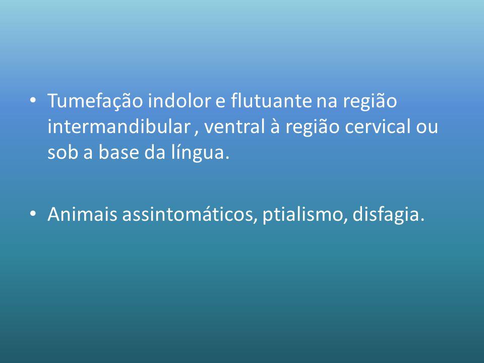 Tumefação indolor e flutuante na região intermandibular , ventral à região cervical ou sob a base da língua.