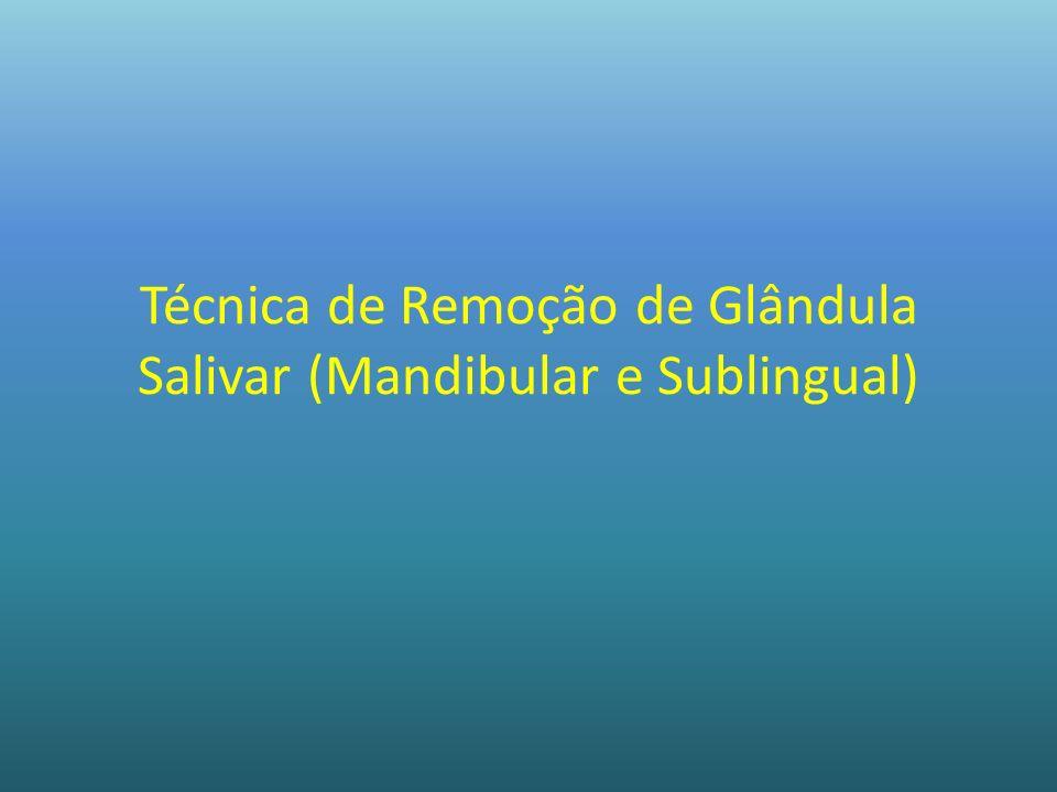 Técnica de Remoção de Glândula Salivar (Mandibular e Sublingual)