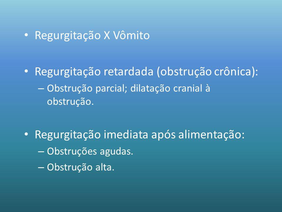 Regurgitação retardada (obstrução crônica):