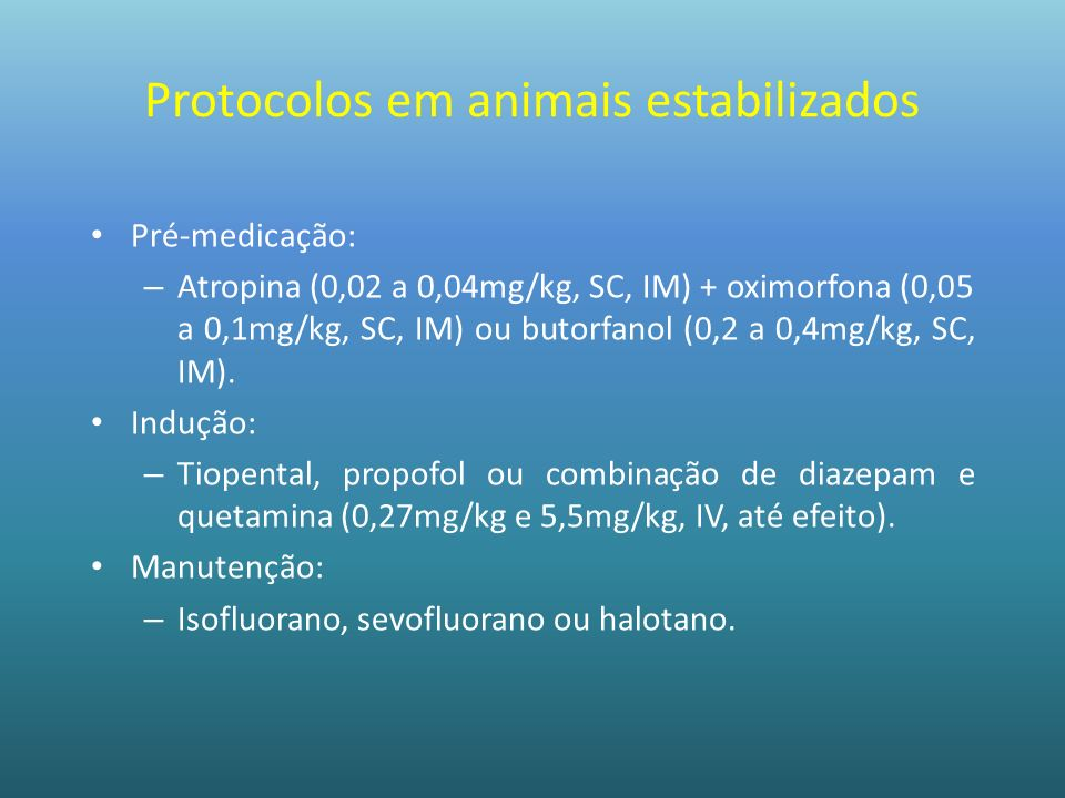 Protocolos em animais estabilizados