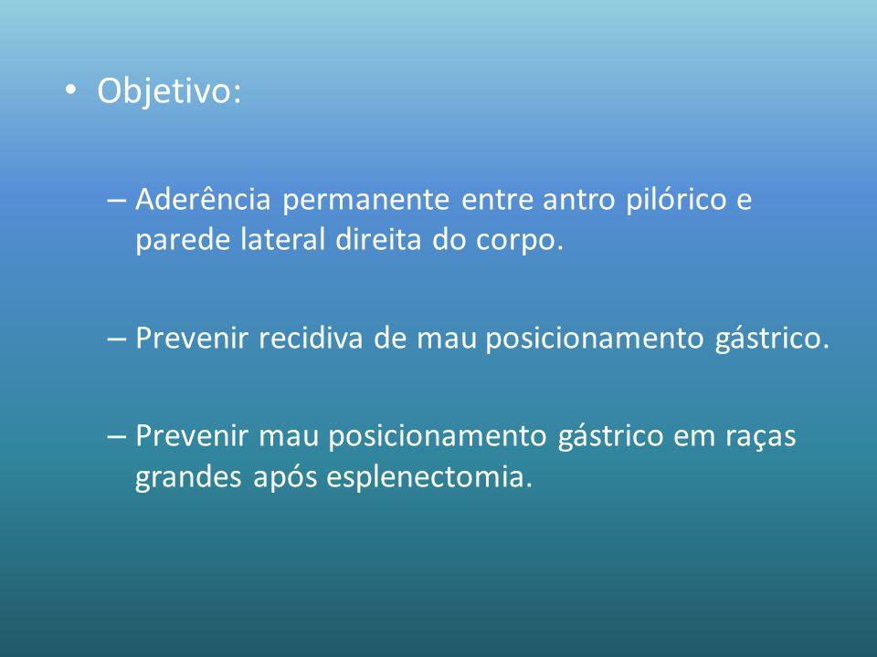 Objetivo:Aderência permanente entre antro pilórico e parede lateral direita do corpo. Prevenir recidiva de mau posicionamento gástrico.