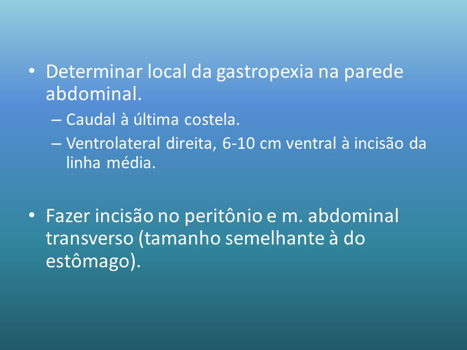 Determinar local da gastropexia na parede abdominal.