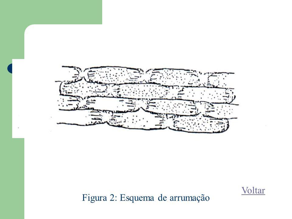 Figura 2: Esquema de arrumação