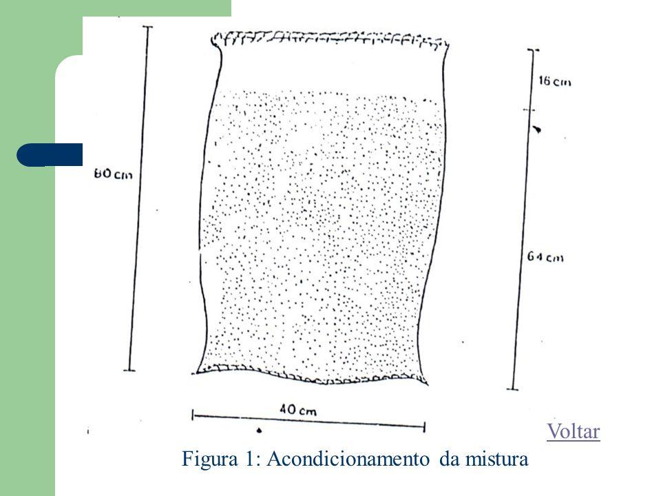 Figura 1: Acondicionamento da mistura