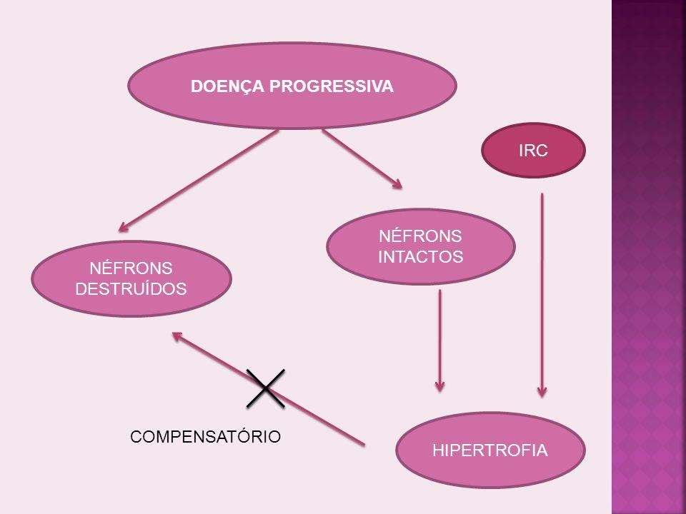 DOENÇA PROGRESSIVA IRC NÉFRONS INTACTOS NÉFRONS DESTRUÍDOS HIPERTROFIA COMPENSATÓRIO
