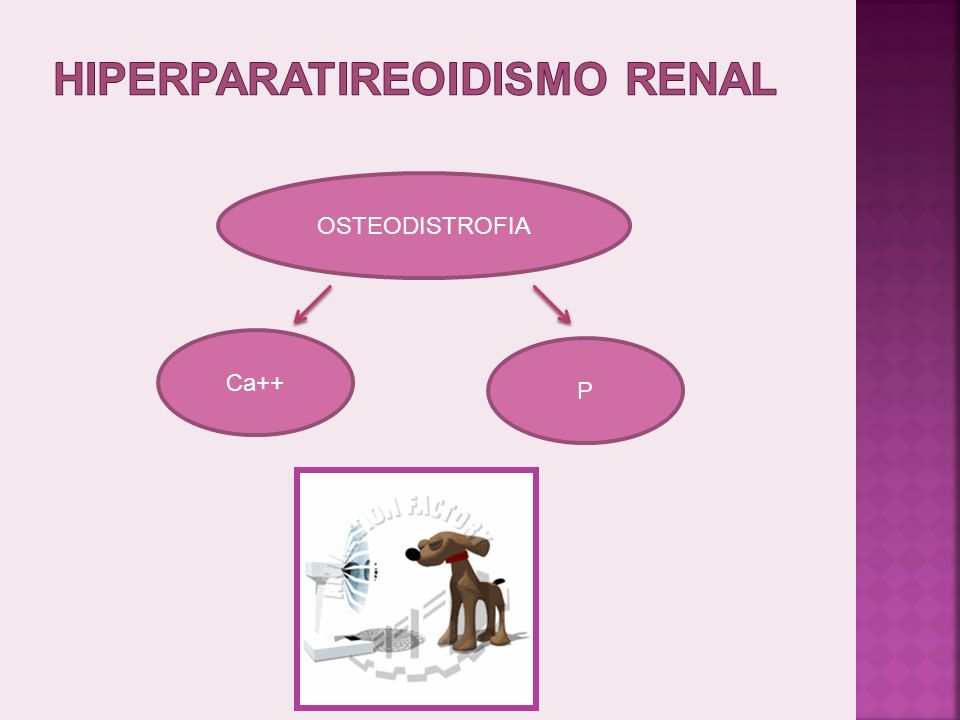 HIPERPARATIREOIDISMO RENAL