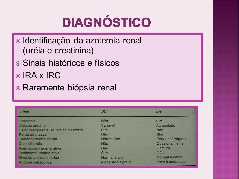 diagnóstico Identificação da azotemia renal (uréia e creatinina)