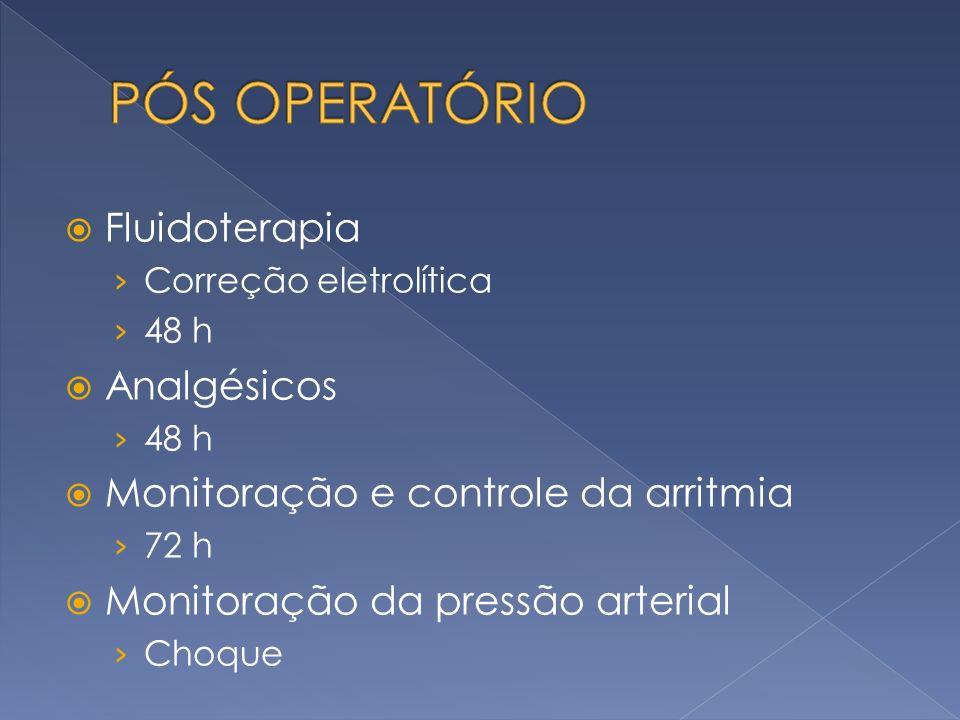 PÓS OPERATÓRIO Fluidoterapia Analgésicos