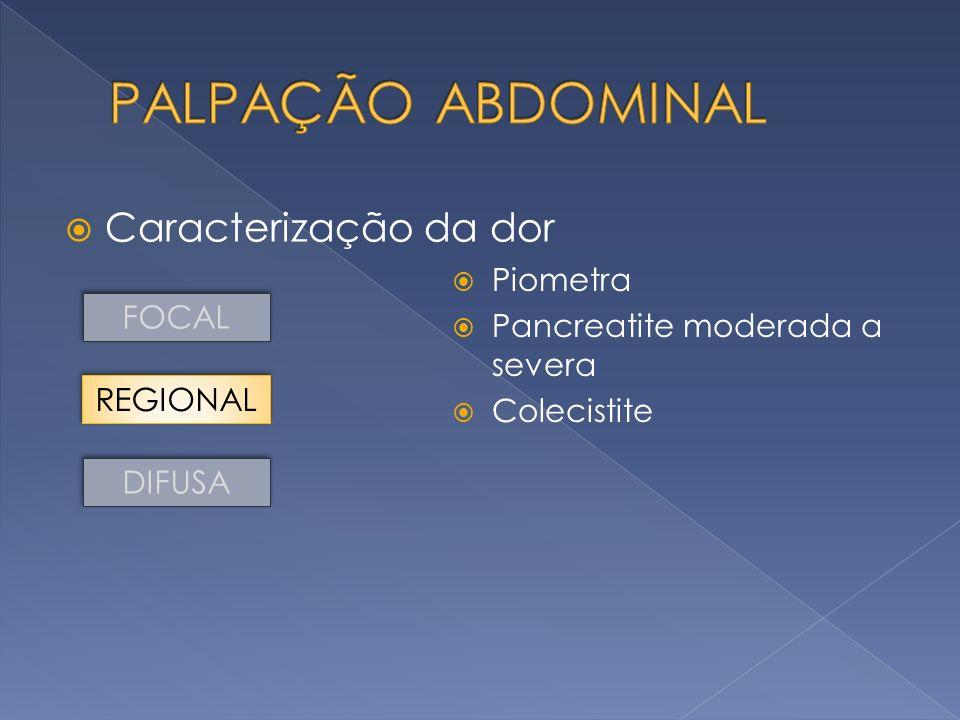PALPAÇÃO ABDOMINAL Caracterização da dor Piometra
