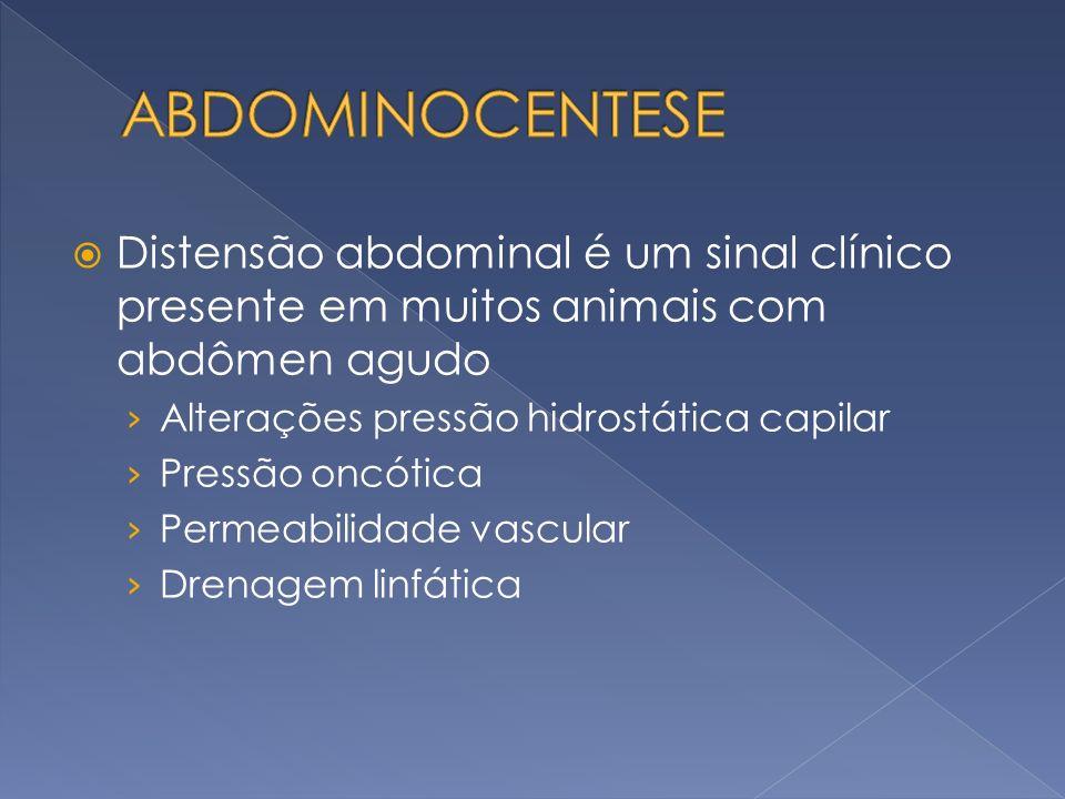 ABDOMINOCENTESE Distensão abdominal é um sinal clínico presente em muitos animais com abdômen agudo.