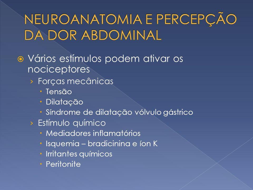 NEUROANATOMIA E PERCEPÇÃO DA DOR ABDOMINAL