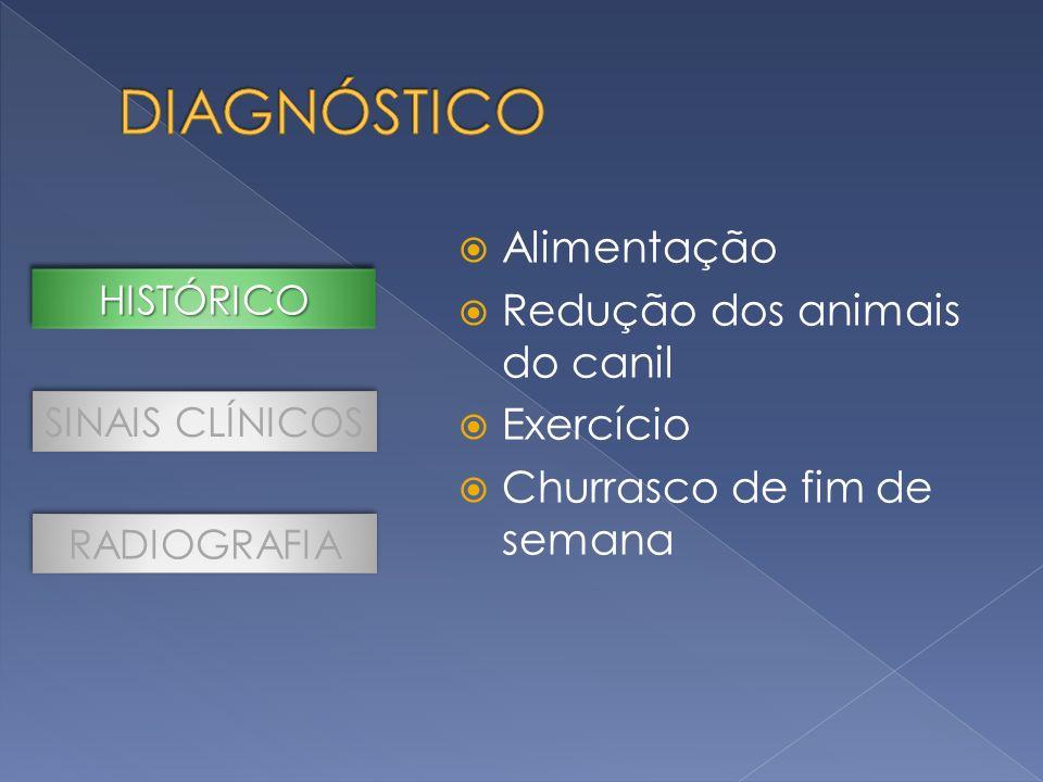 DIAGNÓSTICO Alimentação Redução dos animais do canil Exercício