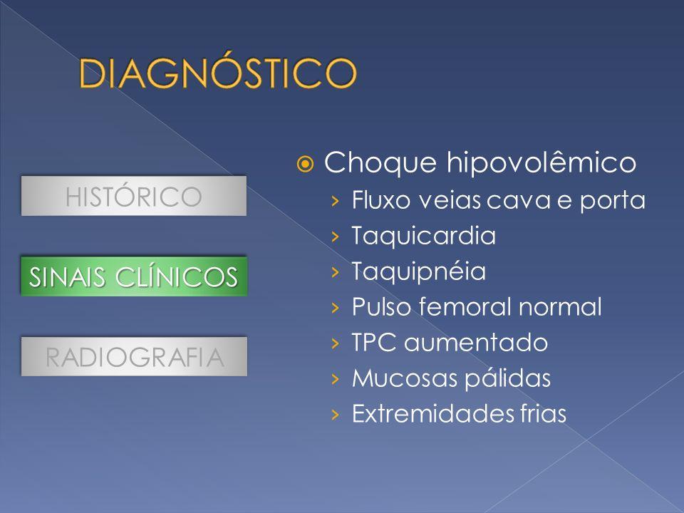 DIAGNÓSTICO Choque hipovolêmico HISTÓRICO SINAIS CLÍNICOS RADIOGRAFIA