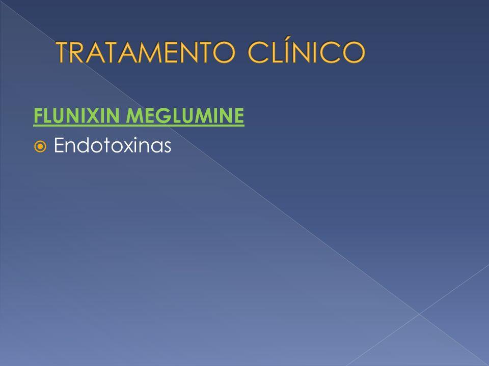 TRATAMENTO CLÍNICO FLUNIXIN MEGLUMINE Endotoxinas
