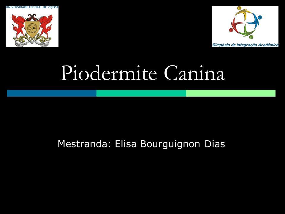 Mestranda: Elisa Bourguignon Dias