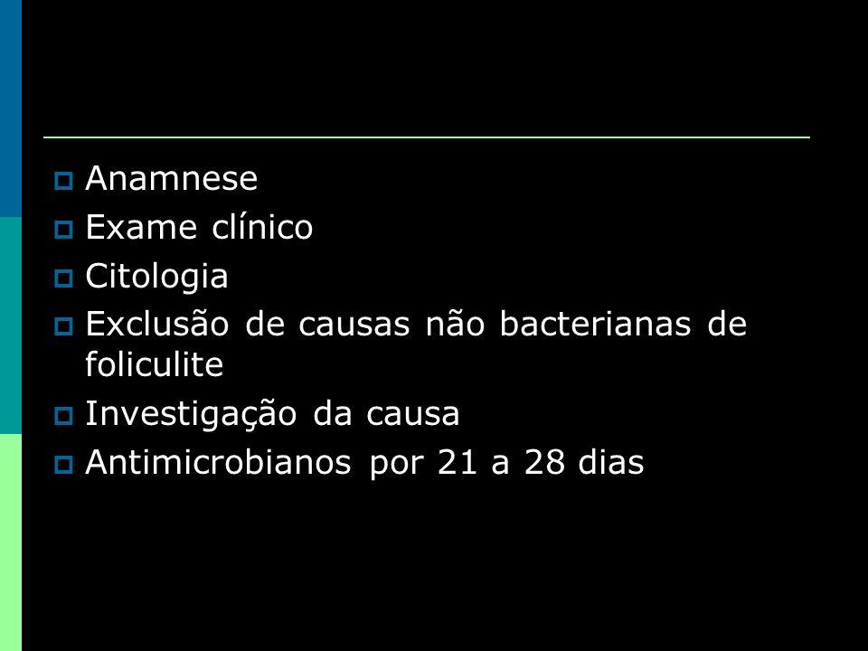 Anamnese Exame clínico. Citologia. Exclusão de causas não bacterianas de foliculite. Investigação da causa.