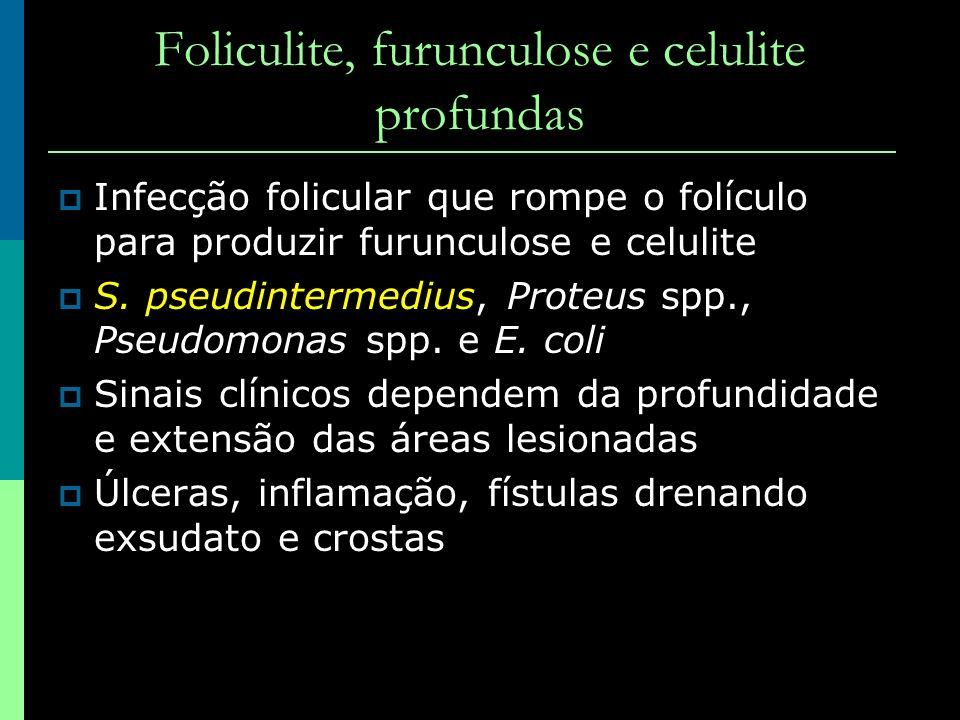 Foliculite, furunculose e celulite profundas