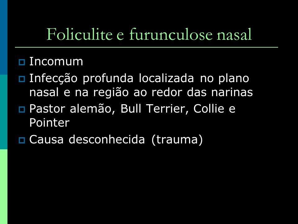 Foliculite e furunculose nasal