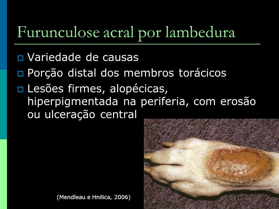 Furunculose acral por lambedura