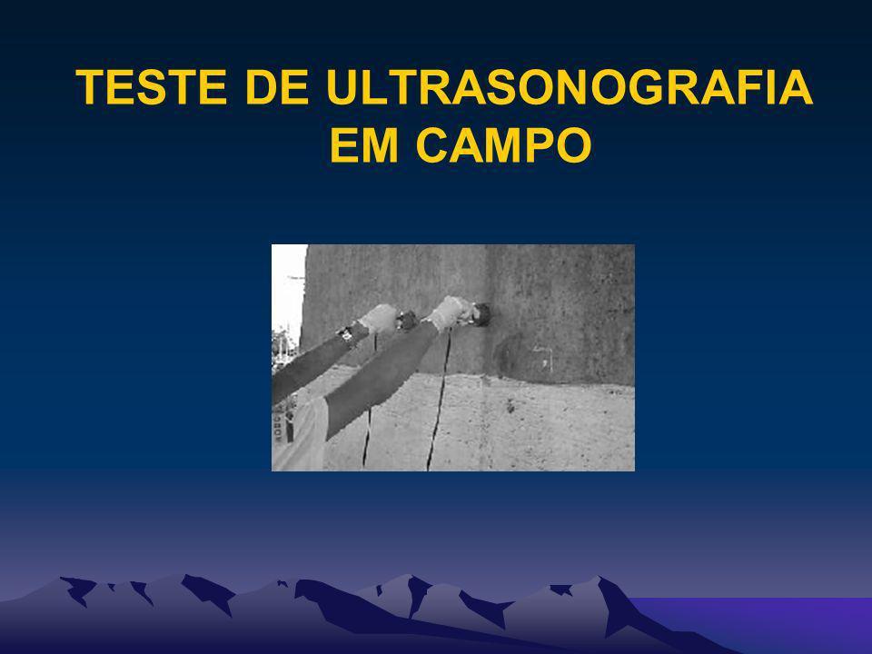 TESTE DE ULTRASONOGRAFIA EM CAMPO