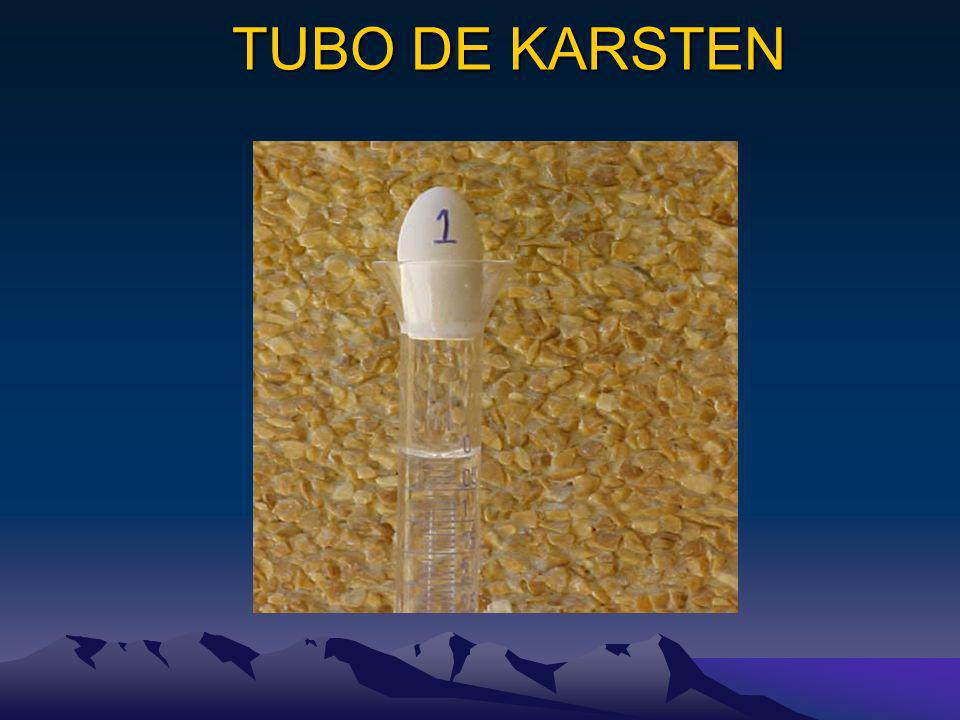 TUBO DE KARSTEN TUBO DE KARSTEN