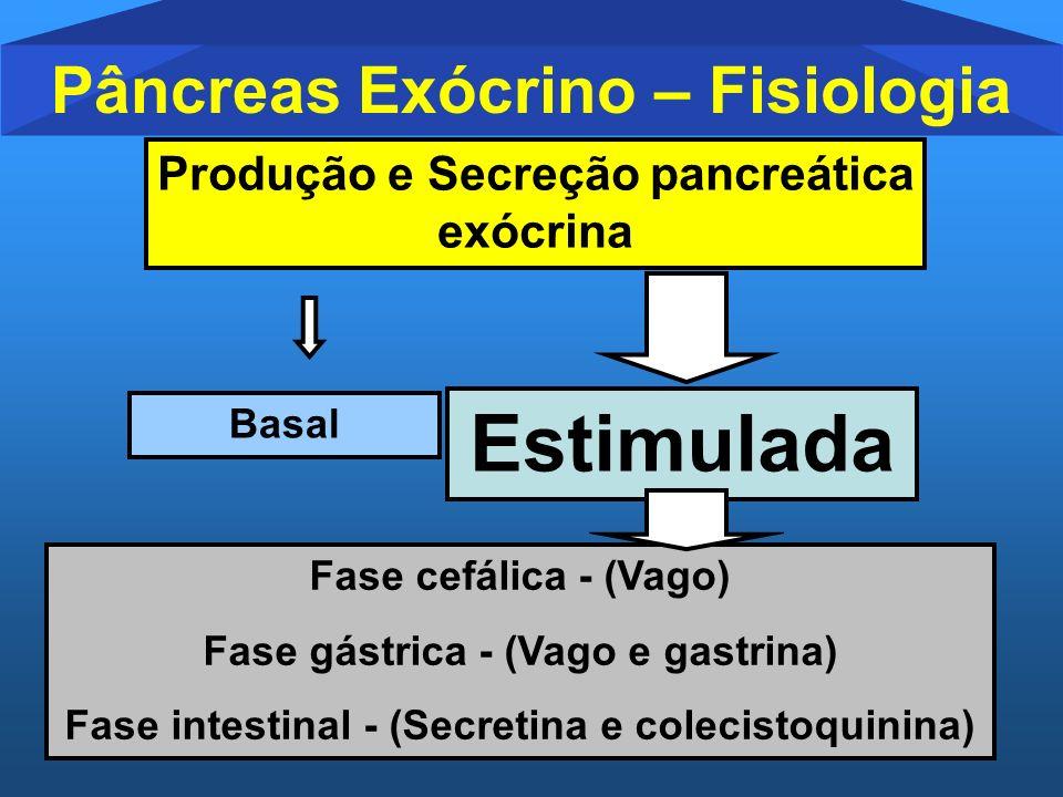 Estimulada Pâncreas Exócrino – Fisiologia