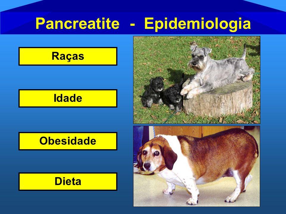 Pancreatite - Epidemiologia