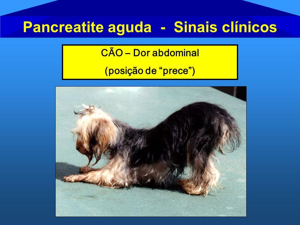 Pancreatite aguda - Sinais clínicos