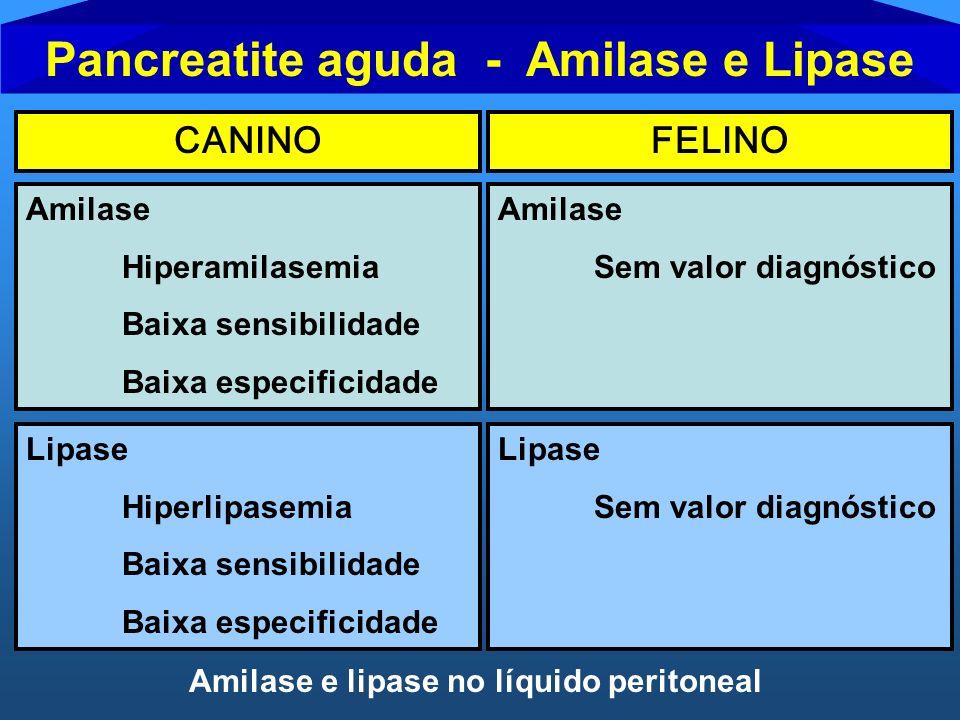 Pancreatite aguda - Amilase e Lipase