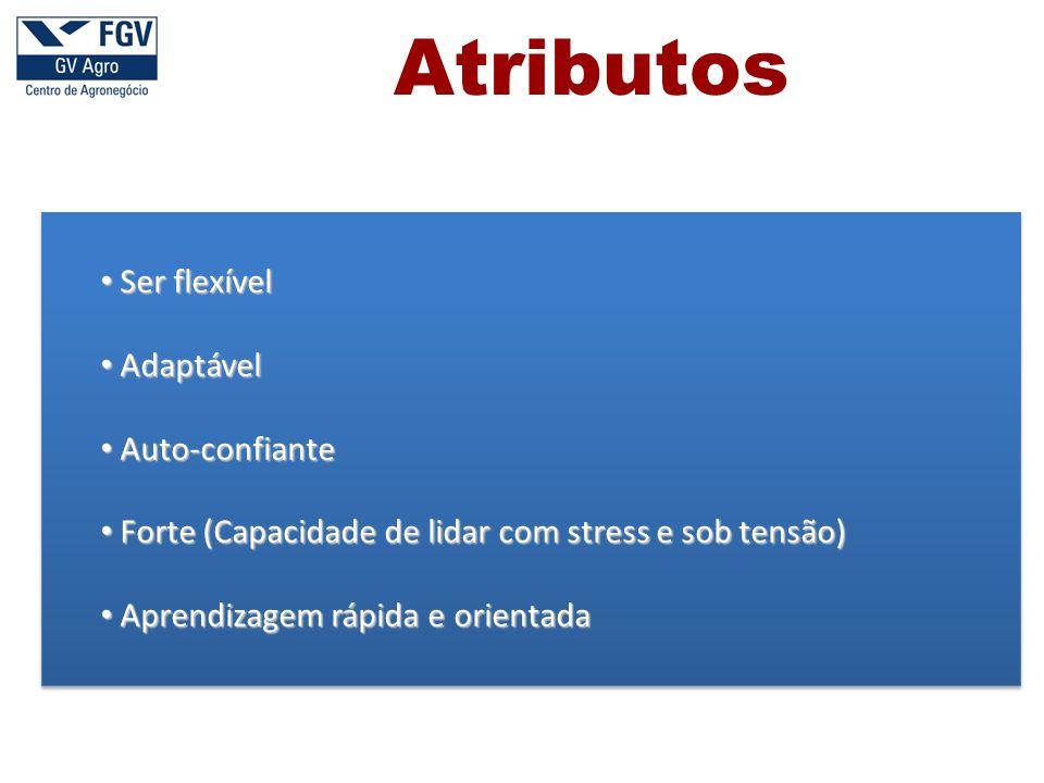 Atributos Ser flexível Adaptável Auto-confiante