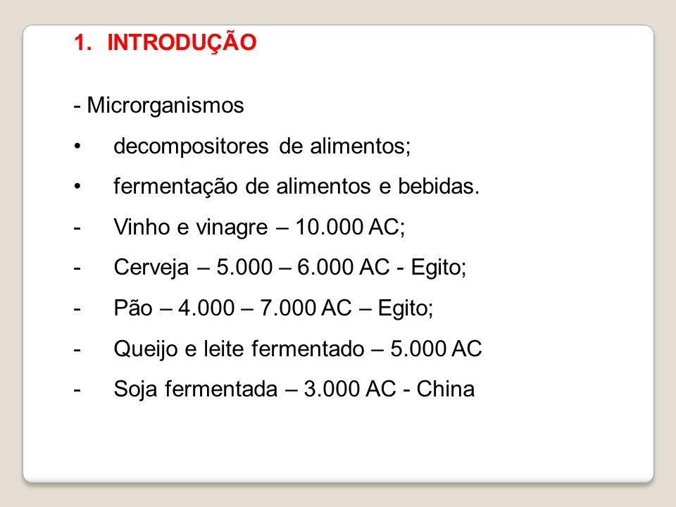 INTRODUÇÃO - Microrganismos. decompositores de alimentos; fermentação de alimentos e bebidas. Vinho e vinagre – 10.000 AC;