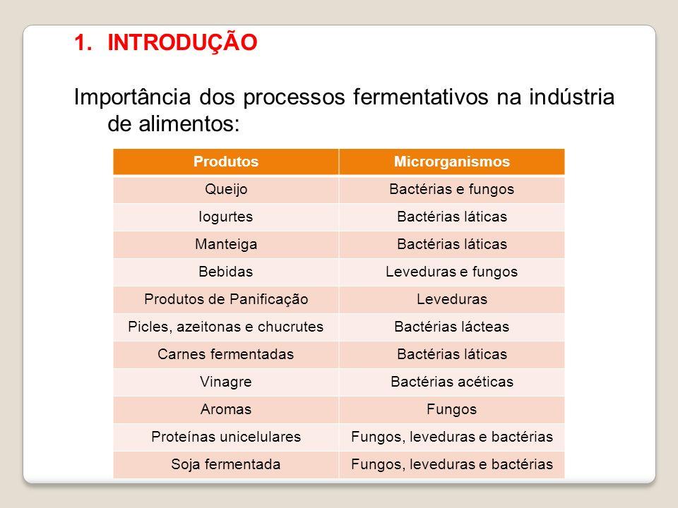 Importância dos processos fermentativos na indústria de alimentos: