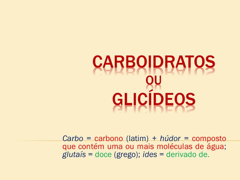 CARBOIDRATOS ou GLICÍDEOS
